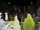 ogrod-rucinskiego-9